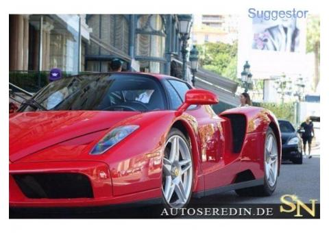 Ferrari Enzo LIKE NEW*